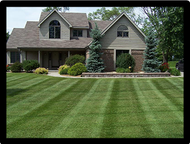 Lawn care turf care mowing and maintenance landscape for Garden design richmond va